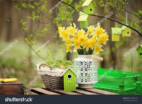Easter Decoration Spring Flowers Narcissus Blooms Stock Photo 373663798 - Shutterstock