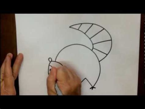 How to Draw a Raccoon Step by Step Cartoon Drawing