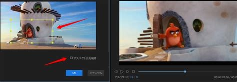 「PC/iPhone/Android」動画の一部を拡大(ズーム)する方法